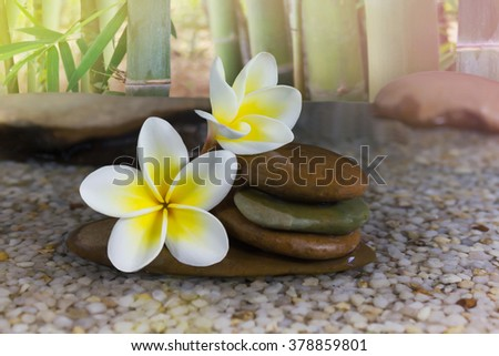 Beautiful sweet fragrant flower plumeria and pebble with bamboo tree background with relaxing and meditation or aroma spa mood - stock photo