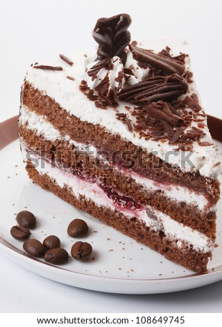 Beautiful tasty chocolate cake close up shoot
