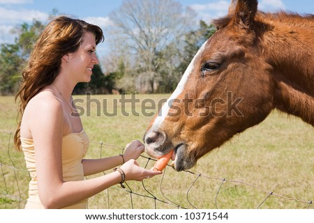 girl giving head horse