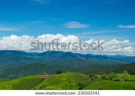 Beautiful terrace rice fields in Mae chaem, Chiang Mai in Thailand. - stock photo