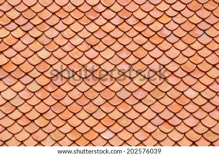 beautiful tile on the roof for background