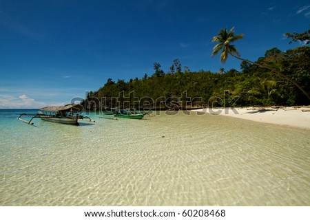 Beautiful tranquil island beach with coconut palm trees - stock photo