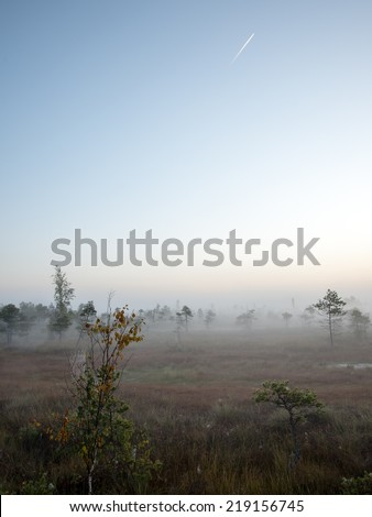 Beautiful tranquil landscape of misty swamp lake with mist. - stock photo