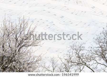 Beautiful tree tops with blossoms on music sky background - stock photo