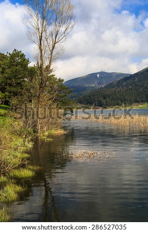 Beautiful trees in meadow area with the reflection of it in water by the coastline of a lake or river, under cloudy sky. - stock photo