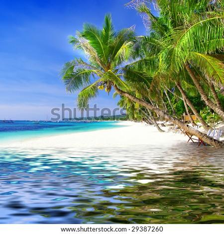 beautiful tropical background - stock photo