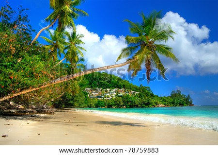 beautiful tropical beach - amazing Seychelles - stock photo