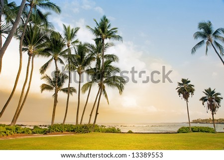 Beautiful Tropical Beach in Big Island, Hawaii