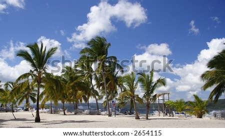 Beautiful tropical beach in the caribbean