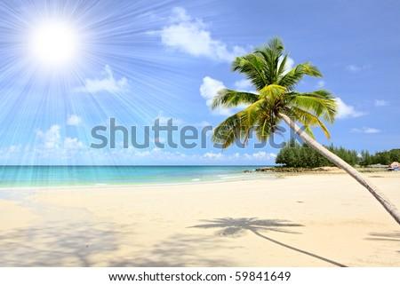 Beautiful tropical beach in the Islands - stock photo