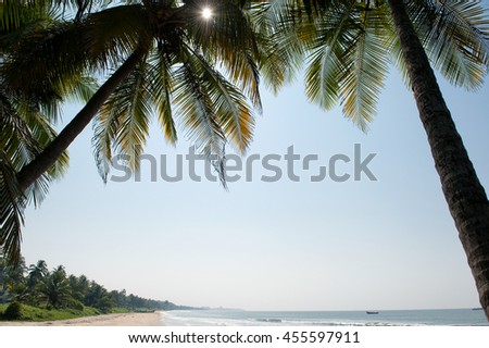 Beautiful tropical beach in the southern India. Green coconut palm trees surround this amazing location.