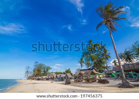 Beautiful tropical beach with coconut palm tree, Palm tree in tropical perfect beach - stock photo