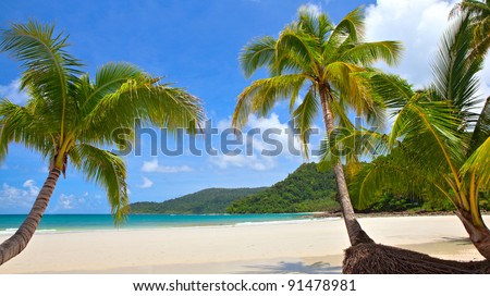 beautiful tropical beach with coconut palm trees - stock photo