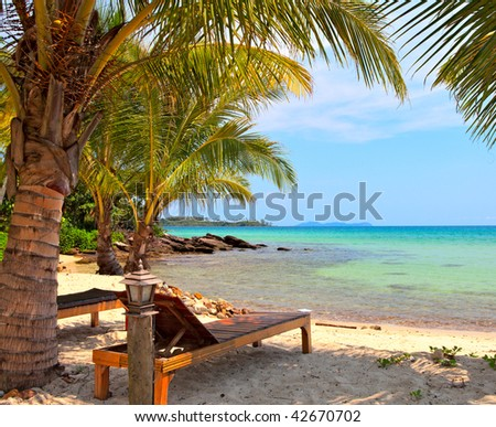 beautiful tropical beach with coconut palm trees in family hotel - stock photo
