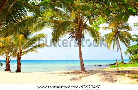 Beautiful tropical beach with coconut palm trees on the sand