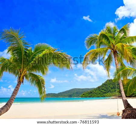 Beautiful tropical beach with green palm trees on white sand under blue sky - stock photo