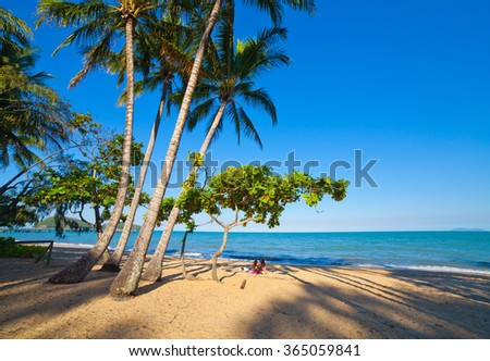 beautiful tropical beach with palm trees. Cairns, Australia - stock photo