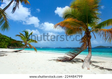 Beautiful tropical beach with palm trees, white sand, turquoise ocean water and blue sky on St John, US Virgin Islands in Caribbean - stock photo