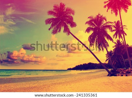 Beautiful tropical beach with silhouettes of palm trees at sunset - stock photo