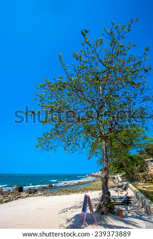 Beautiful tropical beach with trees and sunbeds - stock photo