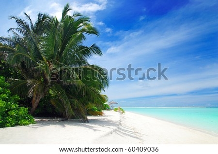 Beautiful tropical beach with turquoise sea, white sand and palm - stock photo