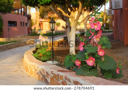 beautiful tropical garden with pink flowers plant and street light - stock photo