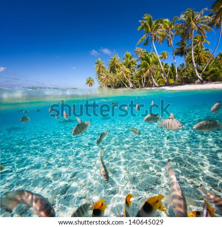 Beautiful tropical island in French Polynesia under and above water - stock photo