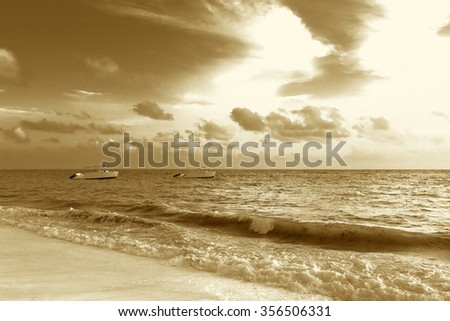 Beautiful tropical landscape of the Atlantic Ocean palm against the sky Palm Ocean Sky