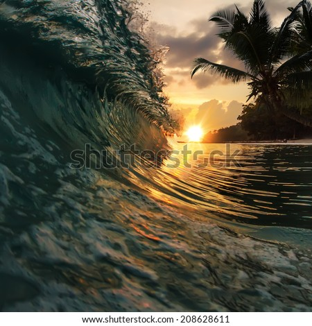 beautiful tropical palm beach with colorful breaking wave under sunset - stock photo