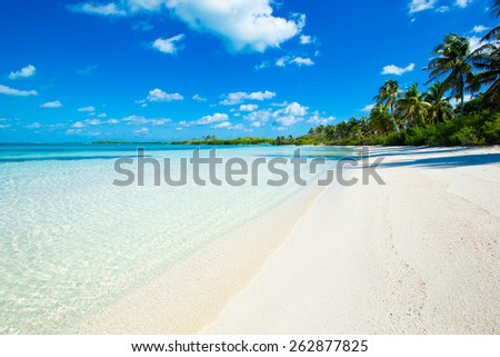 beautiful tropical sea - stock photo