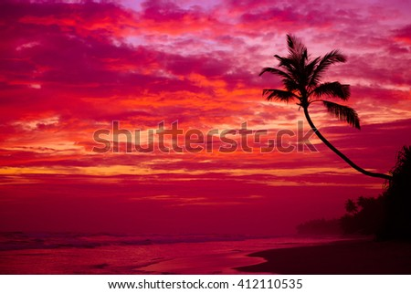Beautiful tropical sunset beach with palm tree silhouette over the water - stock photo