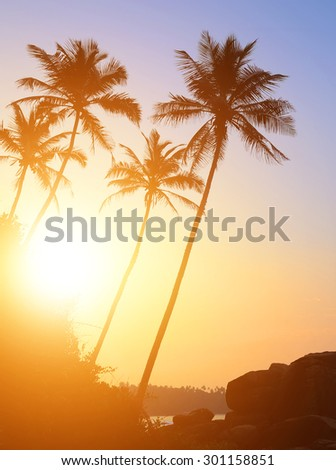 Beautiful tropical sunset with palm trees at beach - stock photo