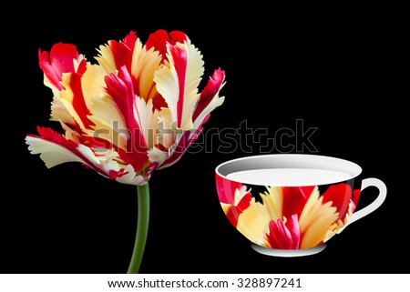 Beautiful tulip  and  tea cup  designed with flaming parrot  tulip's image on black background. Colorful wallpaper, greeting card. - stock photo