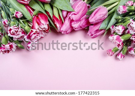 Beautiful tulips and carnations on pink background - stock photo