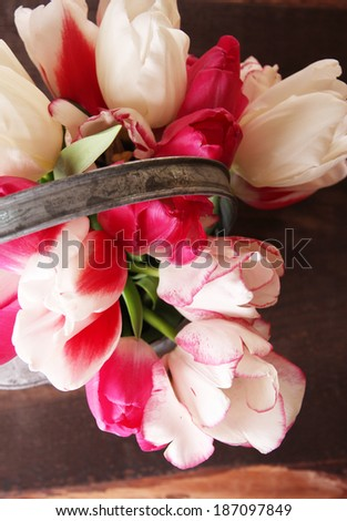 Beautiful tulips in watering can on wooden background
