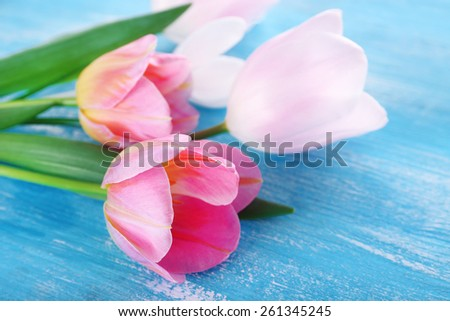 Beautiful tulips on color wooden table, closeup - stock photo
