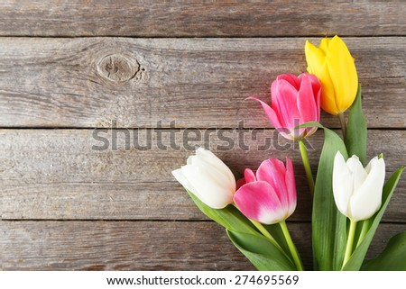 Beautiful tulips on grey wooden background - stock photo