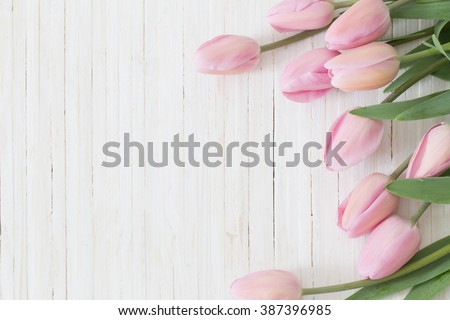 beautiful tulips on wooden background - stock photo
