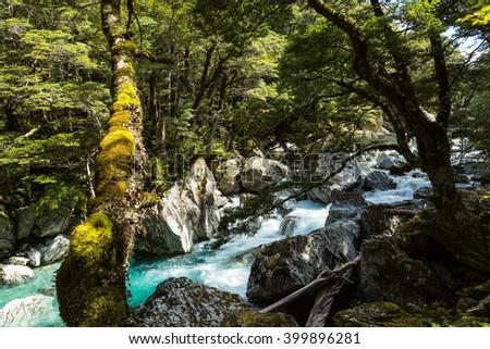 Beautiful turquoise creek on Routeburn Track, New Zealand - stock photo