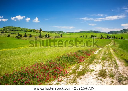 Beautiful tuscany landscape at spring , Italy - stock photo