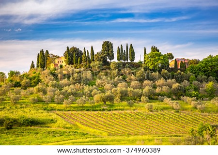 Beautiful tuscany landscape at spring , Italy