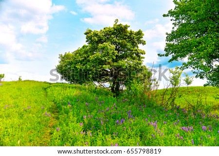 Beautiful unusual spring landscape with blooming herbs and trees against the blue sky and mountainous terrain. Steppe. Urkrainian village. Overcast. Weather