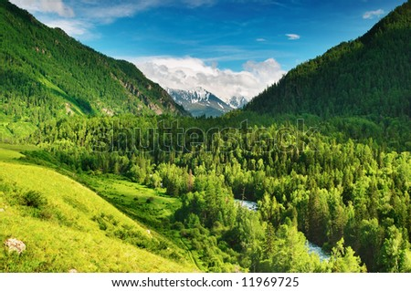 Beautiful valley in Altai mountains - stock photo