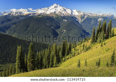 Beautiful valley view with mountain in the background - stock photo