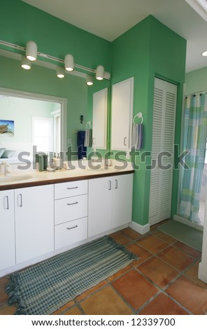 beautiful vanity and bathing area
