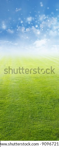 Beautiful vertical background - green field, blue sky, white clouds - stock photo