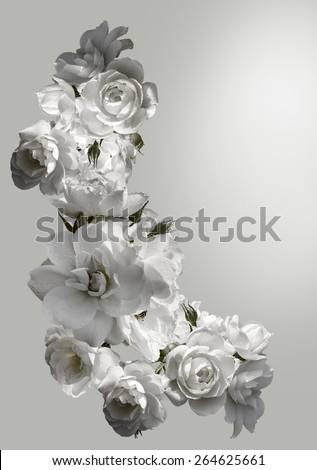 Beautiful vertical frame with a bouquet of white roses with rain drops. Black and white toning image. Overhead view. - stock photo