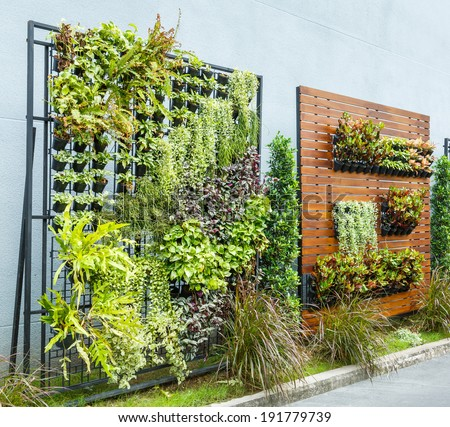 Beautiful vertical garden in city around office building - stock photo