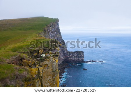 Beautiful vibrant view of the edge of the world, westernmost point in Europe, Iceland, Latrabjarg, looking like faroe islands, Moher Cliffs with atlantic puffins and other birds - stock photo