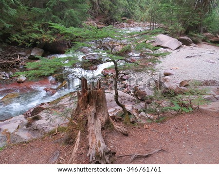 Beautiful view at Avalanche Creek in Glacier - stock photo